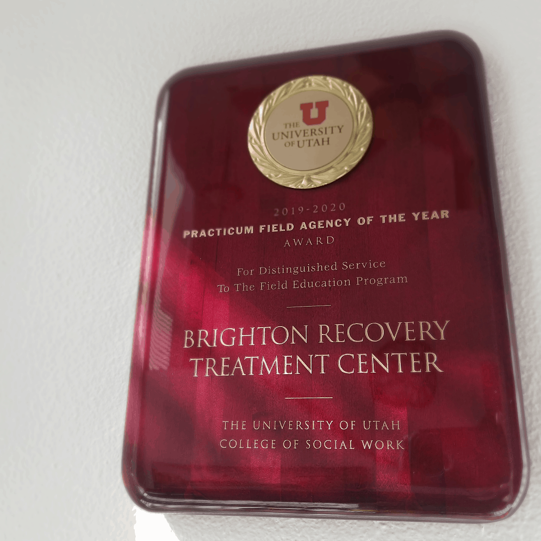 Practicum Field Agency of the Year Brighton Recovery Center