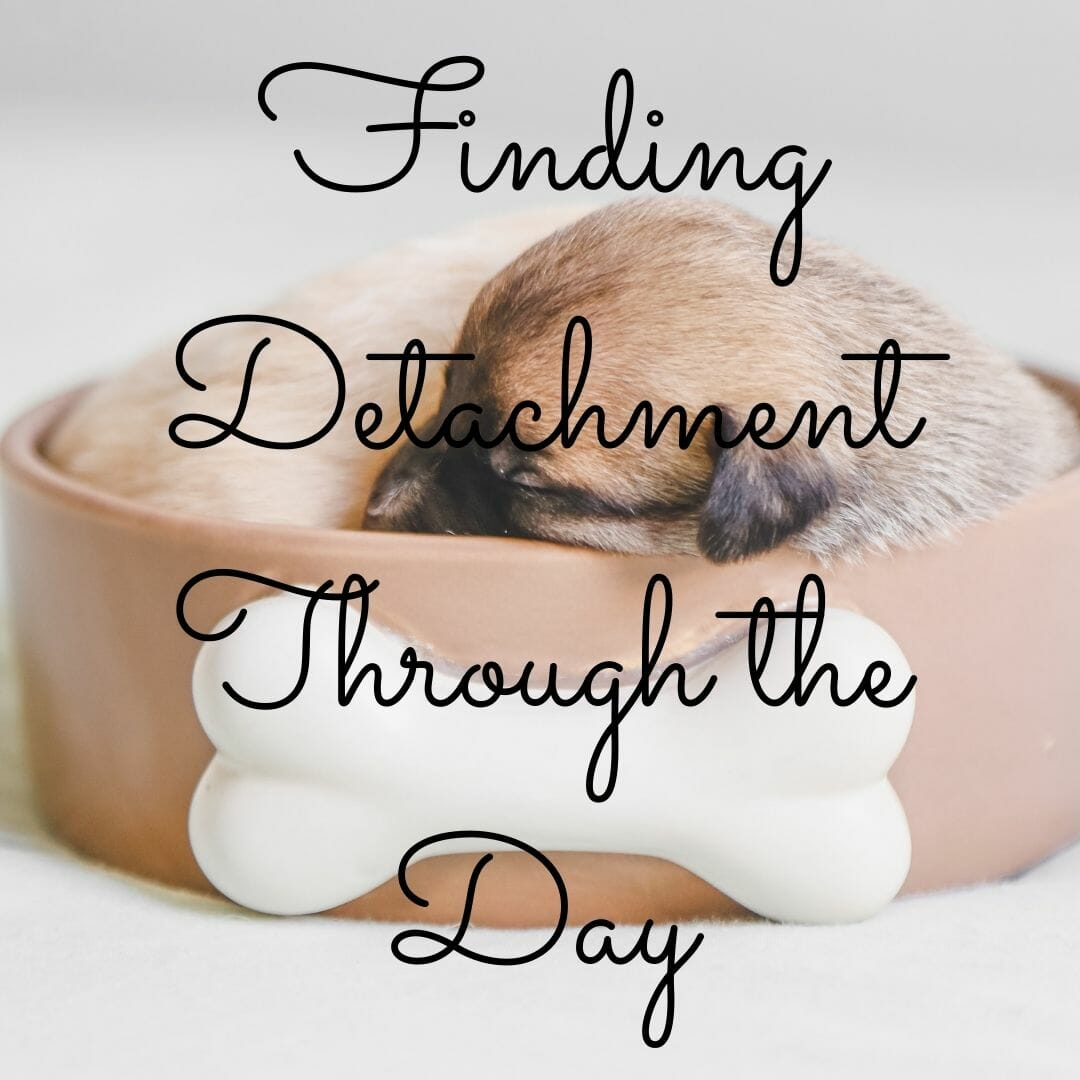 Finding Detachment Through the Day